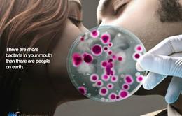 Hiểm họa từ những nụ hôn