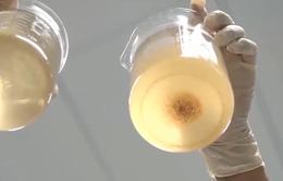 Phân biệt thực phẩm chức năng viên uống nano thật giả