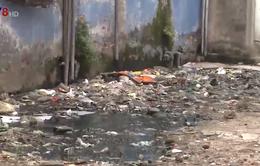Nhếch nhác, ô nhiễm từ chung cư xuống cấp tại Đà Nẵng