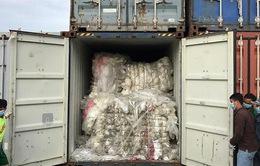 Campuchia phạt nặng nhập khẩu rác bất hợp pháp