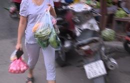 Hà Nội quyết tâm nói không với rác thải nhựa