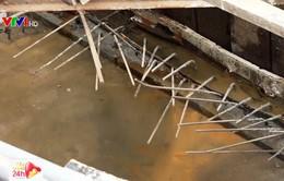 TP.HCM: Hàng loạt công trình bị xử phạt vì để đọng nước chứa lăng quăng