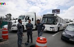 Mexico triển khai lực lượng tại biên giới Guatemala ngăn người di cư