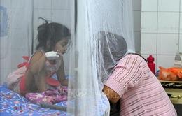 Honduras ban bố tình trạng khẩn cấp quốc gia do dịch sốt xuất huyết