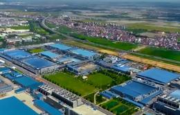 Savills: EVFTA tác động tích cực lên thị trường bất động sản công nghiệp