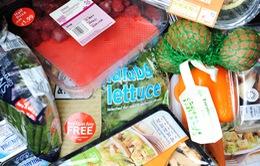 Mỗi năm thế giới lãng phí 1,3 tỷ tấn thực phẩm