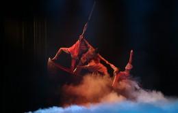 Sơ khảo Cuộc thi Tài năng trẻ Biên đạo Múa toàn quốc 2019: Nơi các tài năng biên đạo múa cả nước hội tụ