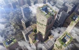 Nhà chọc trời bằng gỗ - Xu hướng mới trong kiến trúc hiện đại