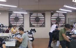 Thách thức tiêu chuẩn lao động sau EVFTA