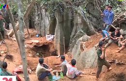 Người dân Yên Bái đổ xô lên rừng đào đá quý