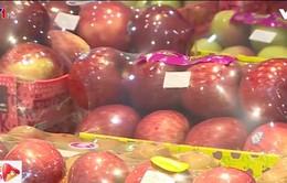 Phân biệt táo nhập khẩu và táo không rõ nguồn gốc