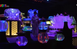 Trình diễn nghệ thuật cá cảnh độc đáo tại Nhật Bản