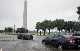 Lũ quét khiến giao thông Washington tê liệt