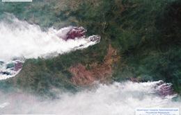 Cháy rừng tiếp tục lan rộng tại Siberia