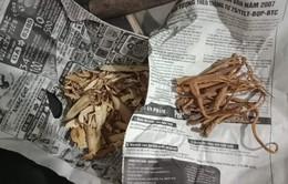 Thận trọng khi mua và sử dụng các loại thảo dược không rõ nguồn gốc