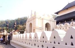Phật giáo Sri Lanka có gì đặc biệt?