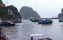 Quảng Ninh chủ động phòng chống bão số 3
