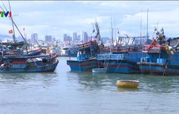 Chi phí chuyến biển tăng, nhiều tàu cá nằm bờ ở Nam Trung Bộ
