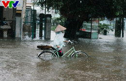 Đảm bảo cung ứng thuốc dịp nghỉ lễ Quốc khánh và dự phòng hậu quả mưa lũ