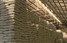 Cơ hội của ngành mía đường khi ATIGA có hiệu lực