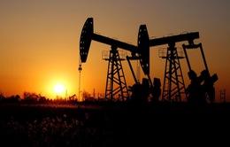 Nhu cầu thị trường dầu mỏ yếu nhất kể từ năm 2008