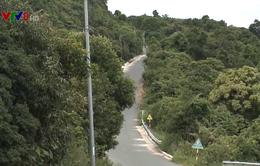 Giải pháp đảm bảo an toàn giao thông trên bán đảo Sơn Trà