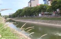 Đề xuất chi 150 tỷ đồng dẫn nước sông Hồng vào sông Tô Lịch