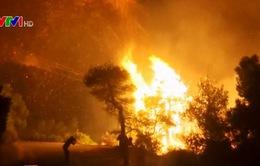 Hy Lạp ban bố tình trạng khẩn cấp do cháy rừng