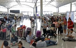 Hỗ trợ công dân Việt Nam bị kẹt ở sân bay Hong Kong