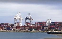 Các kho cảng ở Mỹ đầy ắp hàng nhập khẩu né thuế