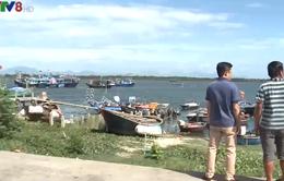 Quảng Nam: Ngư dân chuyển nghề