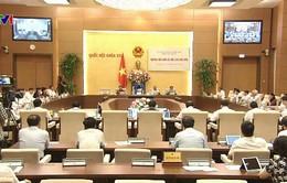 Ủy ban Thường vụ Quốc hội chất vấn các thành viên Chính phủ