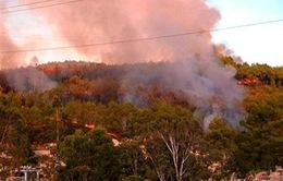 Thừa Thiên - Huế: Cháy rừng thông uy hiếp đường dây tải điện