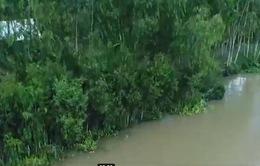 Kè sinh thái - Giải pháp chống sạt lở bờ sông, bờ biển