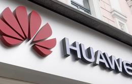 Huawei có thể đang phát triển smartphone có màn hình cuộn