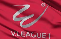 Lịch thi đấu vòng 24 V.League ngày 20/9: Hoàng Anh Gia Lai - CLB Hải Phòng, CLB Viettel - Becamex Bình Dương