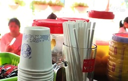 Vịnh Hạ Long nói không với rác thải nhựa 1 lần: Chuyện có dễ?