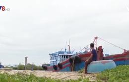 Quảng Ngãi: Gia tăng tình trạng ngư dân nợ quá hạn vốn vay tàu 67