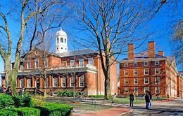 Những Tổng thống, tỷ phú, CEO đình đám thế giới nào từng học ở Harvard?