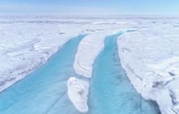 Tổng thống Mỹ xác nhận ý định mua đảo Greenland