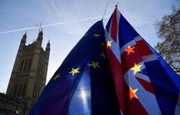 Ảnh hưởng từ Brexit không thỏa thuận đối với Anh và EU
