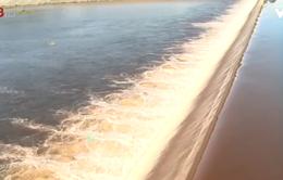 Người dân Hà Tĩnh lo lắng khi nguồn nước Ngàn Trươi bị ô nhiễm