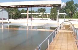Đà Nẵng có nguy cơ thiếu nước sinh hoạt