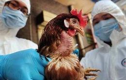 Ca nhiễm cúm gia cầm H5N6 ở người tại Trung Quốc
