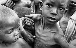 WHO thông qua kế hoạch giảm tỷ lệ suy dinh dưỡng ở châu Phi