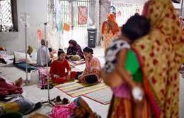 Báo động dịch sốt xuất huyết tại Bangladesh