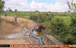 Người dân miền núi nỗ lực cứu lúa bị hạn