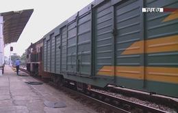 Đường sắt nhận đặt hàng vận chuyển online để phòng chống dịch