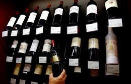 Các nhà sản xuất rượu vang Pháp lo âu trước khả năng bị Mỹ áp thuế 100%