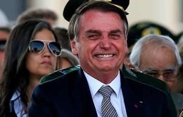 Tổng thống Brazil đi xem hài kịch giữa khủng hoảng cháy rừng Amazon